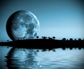 Full moon landscape — Stock Photo
