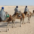 Tourists on camels — Stock Photo