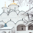 Pokrovsky monastery. Suzdal. — Stock Photo #4589488