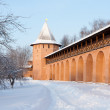 Tower And Wall Of Old Russian Monastery In Suzdal — Photo