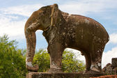 Elephant Statue Of East Mebon, Cambodia — Stock Photo
