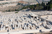 Jewish Cemetery — 图库照片