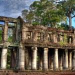 Постер, плакат: Overgrown Khmer Ruin Angkor Wat Cambodia