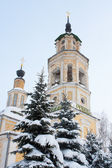 Nikolo-Kremlevskaya Church at Vladimir — Stock Photo