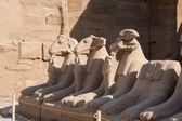 Temple Of Karnak — Stock Photo