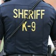Sheriff K-9 Unit — Stock Photo