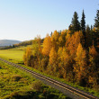Stock Photo: AlaskRailroad in Fall