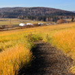 Stock Photo: Rural Trail near Experimental Farm