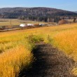 Rural Trail near Experimental Farm - Stock Photo