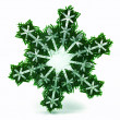 Snowflake — Stock Photo #4172843