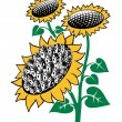 Sunflower — Stock Vector #4172914