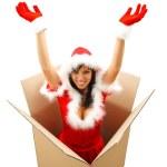 Christmas surprise — Stock Photo #4410368