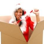 Christmas surprise — Stock Photo #4410369