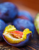 Damson plums — Stock Photo