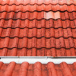 Royalty-Free Stock Photo: Grunge red roof pattern details