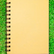 Small notebook on green grass field — Stock Photo