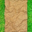 Crumpled brown recycle paper on green grass field — Stock Photo #4116837