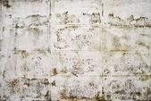 Schmutz weiße betonwand — Stockfoto