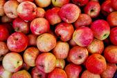 Frischer Apfel im Markt — Stockfoto