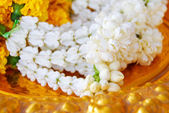 Jasmine garland on gold plate — Stock Photo