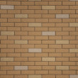 Decorative wall — Stock Photo #4363149