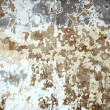 Stock Photo: Mottled wall