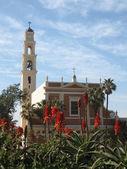 Jaffa St Peter's Church 2008 — Stock Photo
