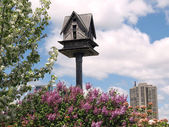 Toronto Lake birdhouse 2008 — Stock Photo
