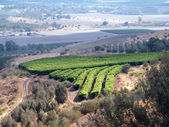 Galilee 2010 — Stock Photo