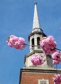 вашингтон пресвитерианская церковь 2010 — Стоковое фото