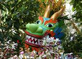 Washington Dragon among Flowers 2010 — Stock Photo