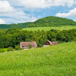 Stockfoto: Country idyll