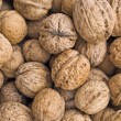 Walnut — Stock Photo #3964300