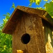 Birdhouse — Foto Stock #4029145