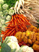 Variety of vegetables — Stockfoto