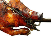 Suckling pig on barbecue — Stock Photo