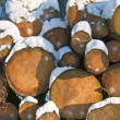 Stock Photo: Fuelwood in snow
