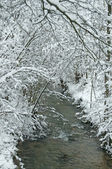 Winter scene with creek — Stock Photo