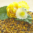 Stock Photo: Bee pollen