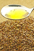 Linseed oil — Stock Photo