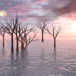 Stock Photo: Dead Trees Sunset