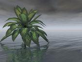 árbol de tormenta — Foto de Stock