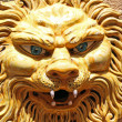 Mask of a lion — Stock Photo