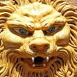 Mask of lion — Stock Photo #4028838