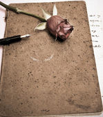 Roses and a fountain pen — Stockfoto