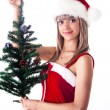 Santa girl holding a Christmas tree with cones and toys. — Stock Photo #4439012