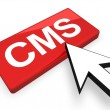 Content Management System — Stock Photo #4463059
