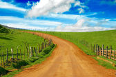 Dirt road on meadow — Stock Photo