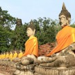 Seating Buddha images - Stockfoto