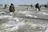 Catch of fish in winter — Stock Photo